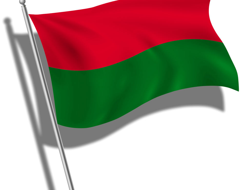 Bandera Liceo Mixto-min